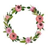 Guirlande décorative de vacances avec des fleurs et des feuilles de protea Éléments floraux de vintage Photos stock