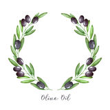 Guirlande de branche d'olivier d'aquarelle Image stock