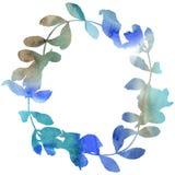 Guirlande de feuilles d'acacia dans un style d'aquarelle Photographie stock