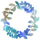 Guirlande de feuilles d'acacia dans un style d'aquarelle Images stock