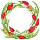 Guirlande de fleur de jardin et de jeune herbe verte Image stock