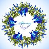 Guirlande de fleurs de jacinthe des bois illustration libre de droits