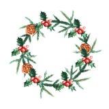 Guirlande de Noël d'aquarelle avec le misletoe, les oranges et les branches des arbres de Noël illustration libre de droits