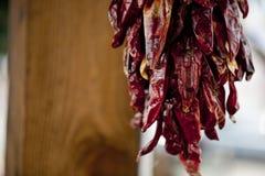 Guirlande de poivron rouge Photo stock