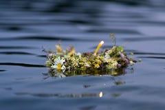 Guirlande de rivière photo libre de droits