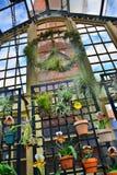 Guirlande de signe de paix dans le jardin Photographie stock libre de droits