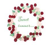 Guirlande des bardes mûrs des cerises avec des feuilles et des fleurs blanches avec un été de bonbon à inscription illustration libre de droits