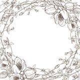 Guirlande des fleurs de fines herbes sauvages Vecteur Illustration tirée par la main Aimez le concept pour épouser des invitation illustration libre de droits