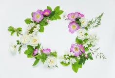 Guirlande des fleurs sauvages Photos stock