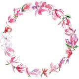 Guirlande des magnolias photos stock