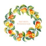 Guirlande des poires Trame ronde Poires d'aquarelle illustration libre de droits