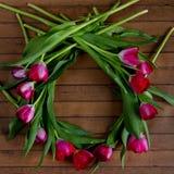 Guirlande des tulipes de framboise sur le fond en bois Photo libre de droits