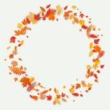 Guirlande faite de fleurs et feuilles d'automne sur le fond clair Composition d'automne ENV 10 illustration stock