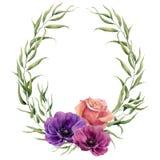 Guirlande florale d'aquarelle avec des feuilles d'eucalyptus, rose et des anémones La frontière florale peinte à la main avec des Photos libres de droits