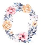 Guirlande florale d'hiver avec des branches, usines de coton, fleurs illustration libre de droits