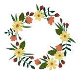 Guirlande florale d'isolement sur le fond blanc Trame florale de vecteur Images stock