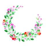 Guirlande florale Guirlande avec la fleur, la baie et l'herbe de pavot illustration stock