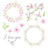 Guirlande florale peinte à la main d'aquarelle Images libres de droits
