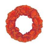 Guirlande florale rouge Image libre de droits