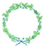 Guirlande florale verte Image libre de droits