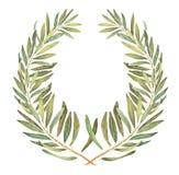 Guirlande olive d'aquarelle de laurier illustration libre de droits