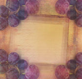 Guirlande stylisée de vigne de vintage, fond Photos libres de droits