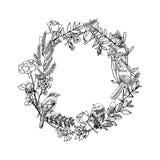 Guirlande tirée par la main florale Bannières florales de vintage tiré par la main de vecteur Illustration d'encre de croquis Ban Images stock