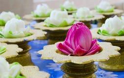 Guirlandes de fleur de Lotus sur le plateau Images stock