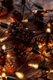 Guirnalda brillante Foto de archivo