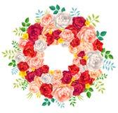 Guirnalda brillante de los colores rojos, púrpura, rosada y blanca de las peonías del vector del verano en el fondo blanco Fotografía de archivo libre de regalías