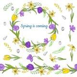 Guirnalda colorida de las diversas flores de la primavera Cepillo horizontal sin fin Frontera horizontal inconsútil fotografía de archivo