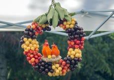 Guirnalda de cerezas amarillas, rosadas, rojas y negras con los polluelos foto de archivo libre de regalías