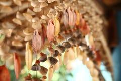 Guirnalda de conchas de berberecho Fotografía de archivo libre de regalías