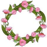 Guirnalda de flores rosadas frescas foto de archivo libre de regalías