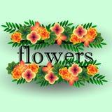Guirnalda de flores tropicales Foto de archivo