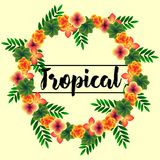 Guirnalda de flores tropicales Imagen de archivo libre de regalías