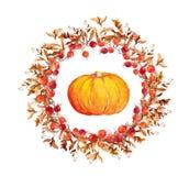 Guirnalda de la acción de gracias - calabazas, bayas, hojas de otoño Frontera redonda de la acuarela Foto de archivo libre de regalías