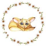 Guirnalda de la acuarela con la manzanilla y el zorro en un fondo blanco stock de ilustración