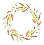 Guirnalda de la acuarela del otoño Hojas, branchs y flores foto de archivo libre de regalías