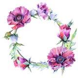 Guirnalda de la flor de la amapola del Wildflower en un estilo de la acuarela Imágenes de archivo libres de regalías