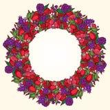 Guirnalda de la flor de la amapola Imagenes de archivo
