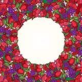 Guirnalda de la flor de la amapola Foto de archivo libre de regalías