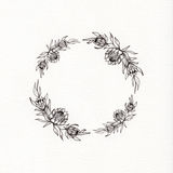 Guirnalda de la flor del Protea Fotografía de archivo libre de regalías