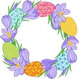 Guirnalda de la flor de la primavera de azafranes y de los huevos de Pascua Elementos del vector aislados ilustración del vector