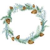 Guirnalda de la Navidad del invierno con los conos pintados en acuarela en un fondo blanco ilustración del vector