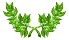 Guirnalda de la rama de olivo Imágenes de archivo libres de regalías