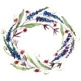 Guirnalda de las flores de la acuarela Imagenes de archivo