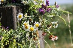Guirnalda de las flores que cuelgan en un palillo de madera en un campo salvaje Imagen de archivo libre de regalías
