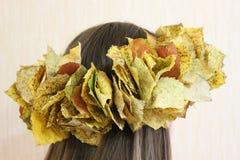 Guirnalda de las hojas Foto de archivo libre de regalías