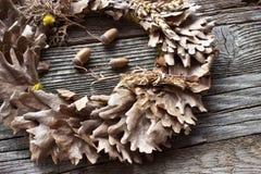 Guirnalda de las hojas y de las bellotas del roble Fotografía de archivo